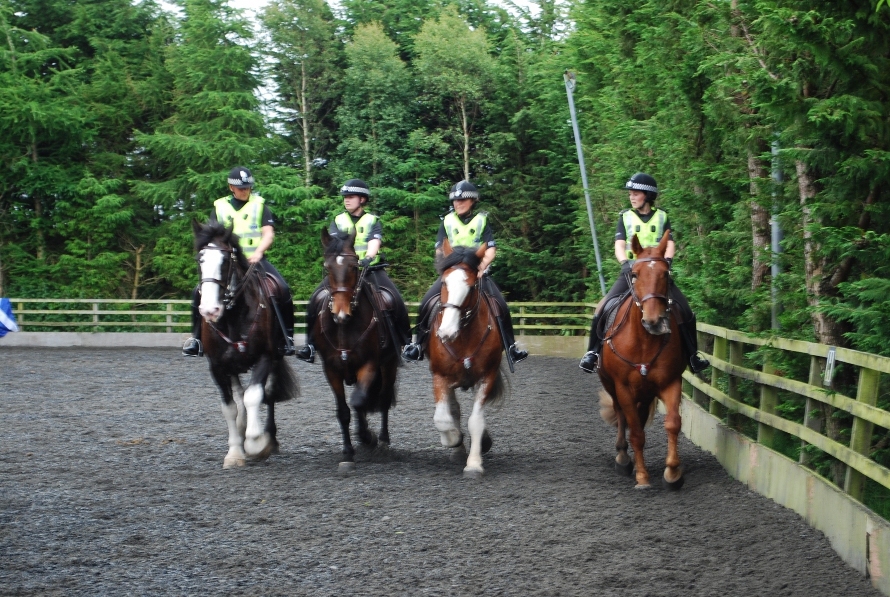 Reiterstaffel der Polizei