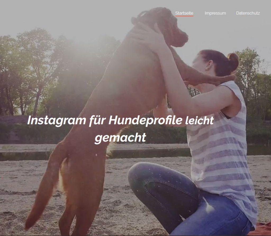 Instagram für Hundebesitzer